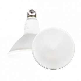 Lampada LED 15W E27 PAR38 luce bianco freddo 6000K 30° IP65