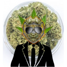 Mr Wana® ''Seedless CBD 5.8''- 5g