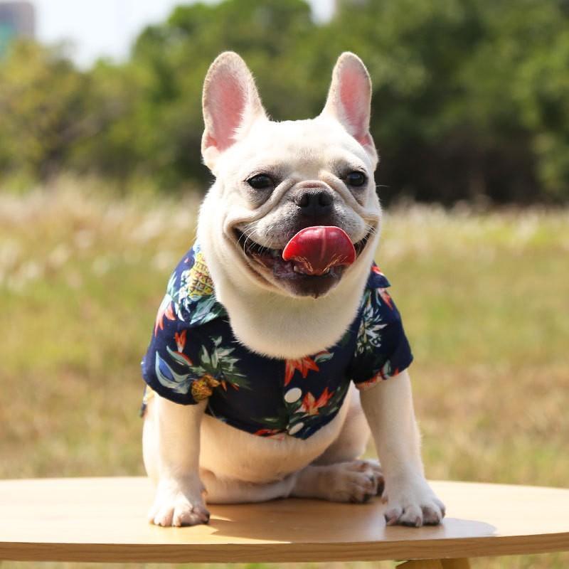 Portafaretto incasso Impermeabile IP44 quadrato Nickel Satinato