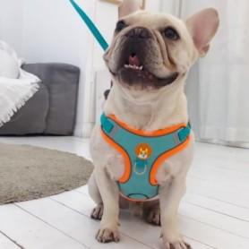 Portafaretto incasso alluminio spazzolato Quadrato regolabile 1*GU10