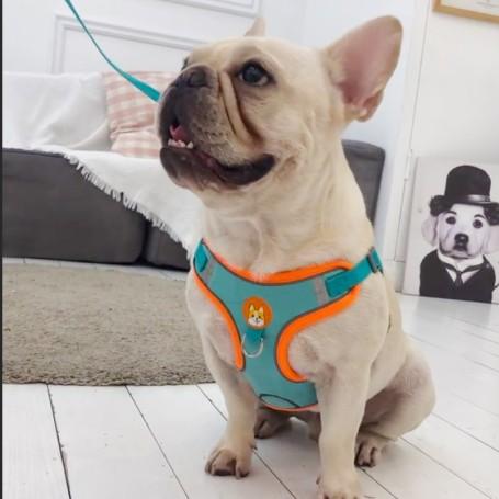 Portafaretto incasso alluminio spazzolato rotondo regolabile 1*GU10